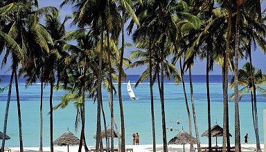 Emerald Dream of Zanzibar